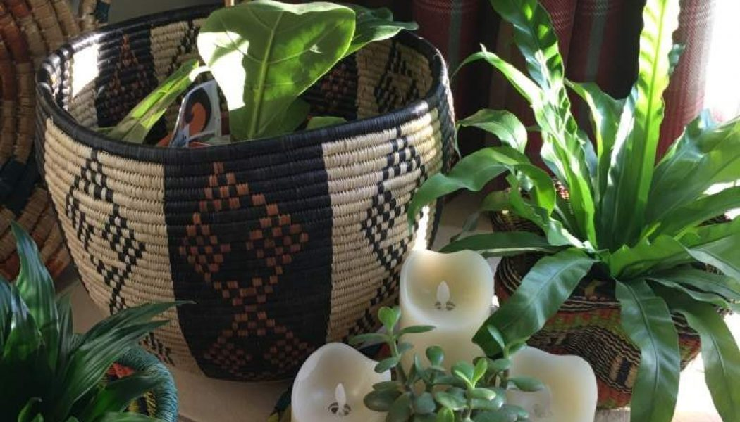Home Decorating Ideas 4 Baskets love plants – Plants love baskets